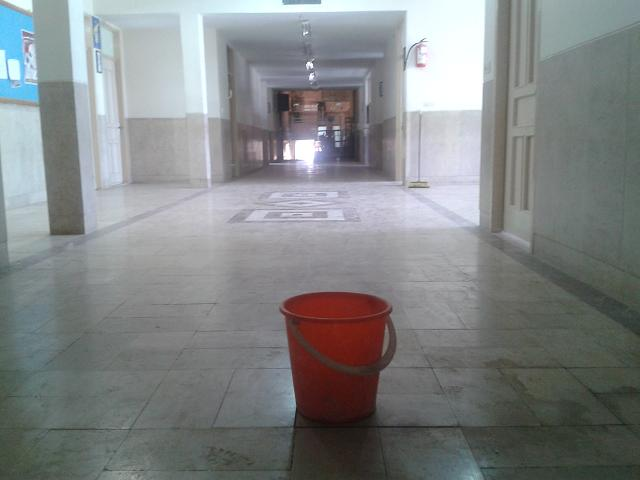 در این عکس: سطل آب
